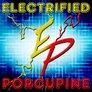 ELECTRIFIED PORCUPINE